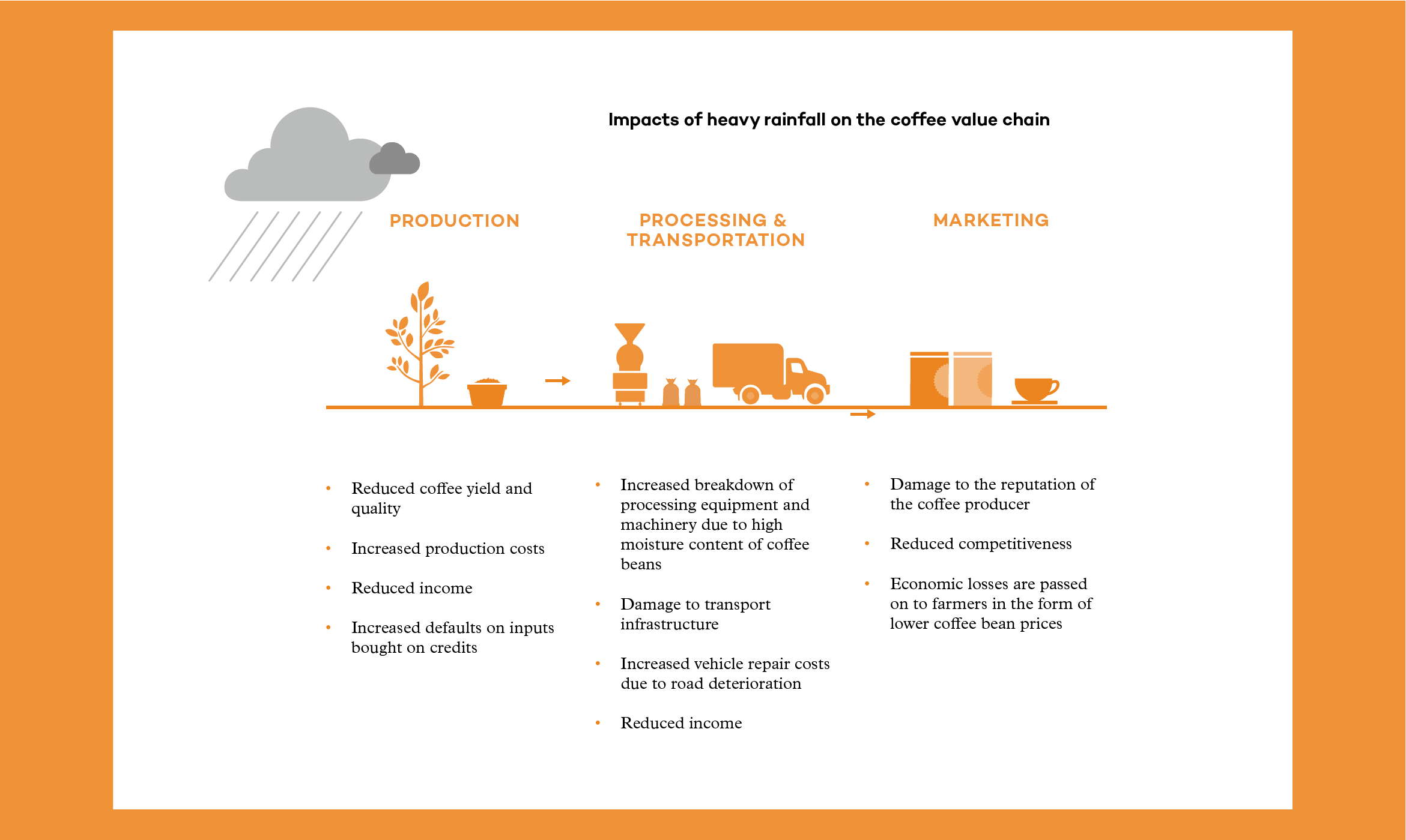 Illustration describing impacts of heavy rainfall on the coffee value chain extracted from the 2015 Annual Report.